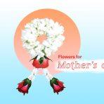 ดอกไม้ให้แม่ไม่ได้มีแค่ดอกมะลิ ชอบแบบไหนก็เตรียมไว้ไปเซอร์ไพรส์วันแม่กัน!